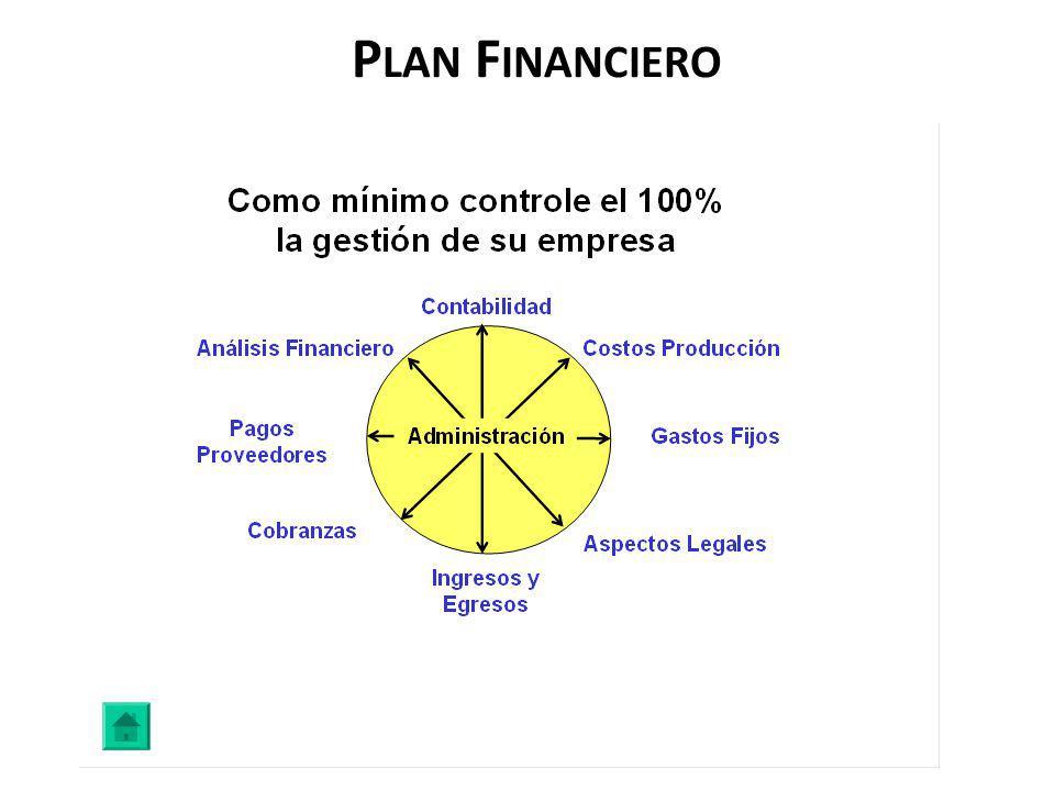 P LAN F INANCIERO