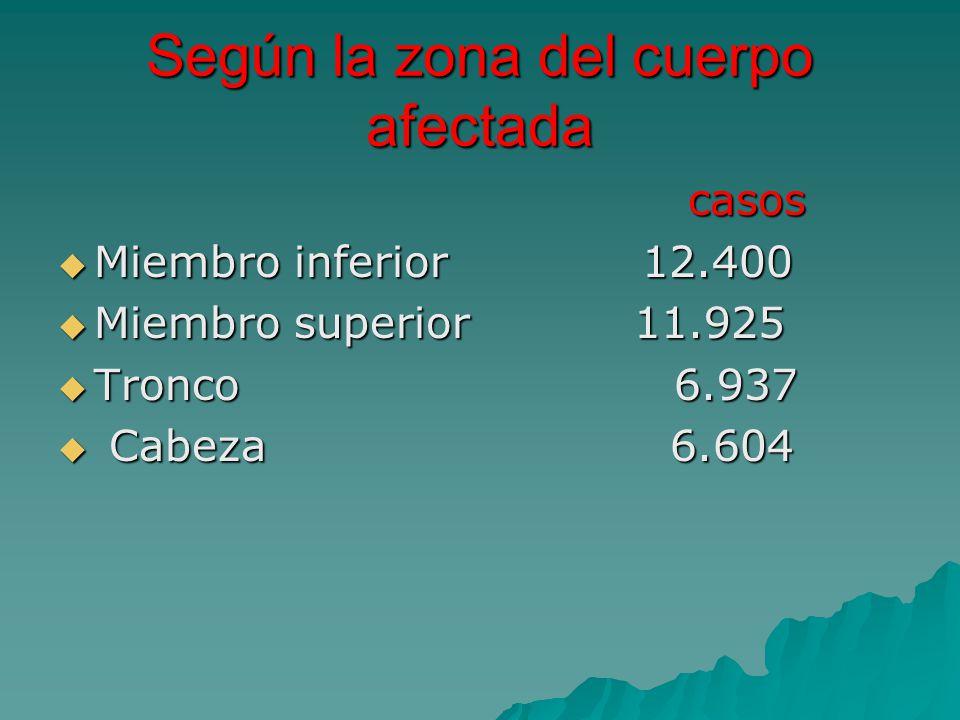Según la zona del cuerpo afectada casos casos Miembro inferior 12.400 Miembro inferior 12.400 Miembro superior 11.925 Miembro superior 11.925 Tronco 6.937 Tronco 6.937 Cabeza 6.604 Cabeza 6.604