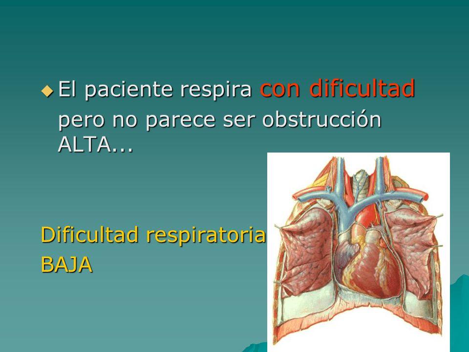 El paciente respira con dificultad El paciente respira con dificultad pero no parece ser obstrucción ALTA... Dificultad respiratoria BAJA