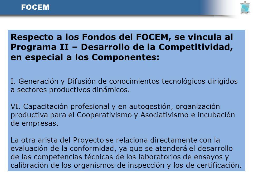 FOCEM Respecto a los Fondos del FOCEM, se vincula al Programa II – Desarrollo de la Competitividad, en especial a los Componentes: I. Generación y Dif