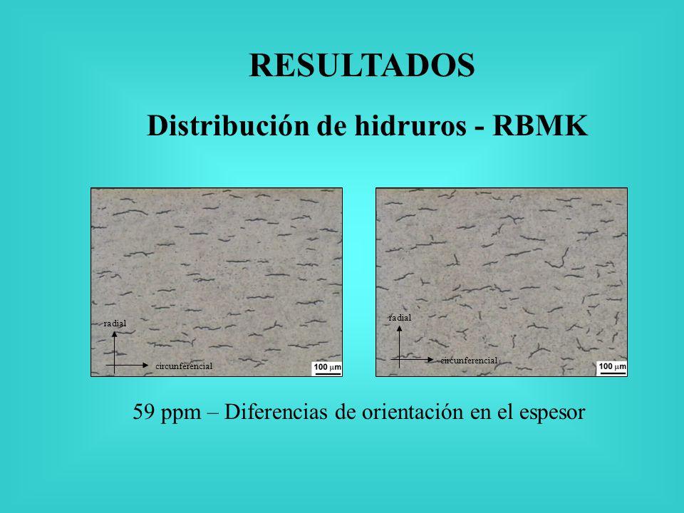 RESULTADOS Distribución de hidruros - RBMK 59 ppm – Diferencias de orientación en el espesor radial circunferencial radial circunferencial