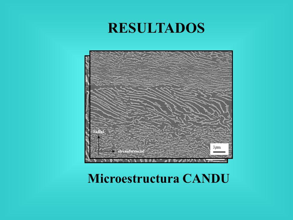 RESULTADOS Microestructura CANDU Circ. radial 1.5 m radial circunferencial 3 m