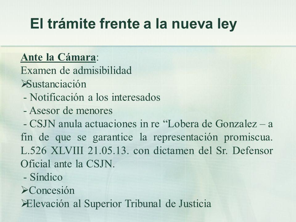 Ante la Cámara: Examen de admisibilidad Sustanciación - Notificación a los interesados - Asesor de menores - CSJN anula actuaciones in re Lobera de Gonzalez – a fin de que se garantice la representación promiscua.