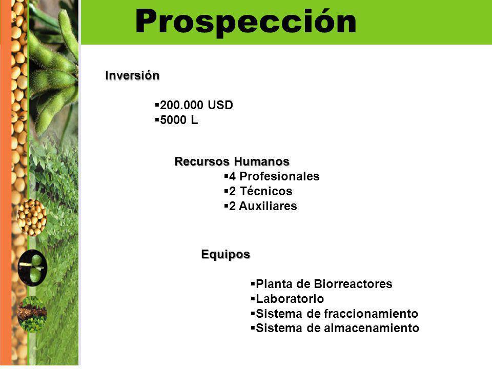 ProspecciónInversión 200.000 USD 5000 L Recursos Humanos 4 Profesionales 2 Técnicos 2 Auxiliares Equipos Planta de Biorreactores Laboratorio Sistema d