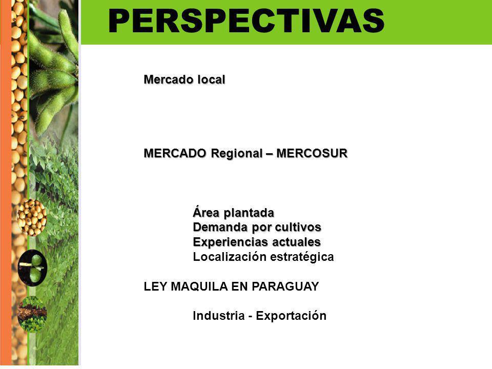 PERSPECTIVAS Mercado local MERCADO Regional – MERCOSUR Área plantada Demanda por cultivos Experiencias actuales Localización estratégica LEY MAQUILA E