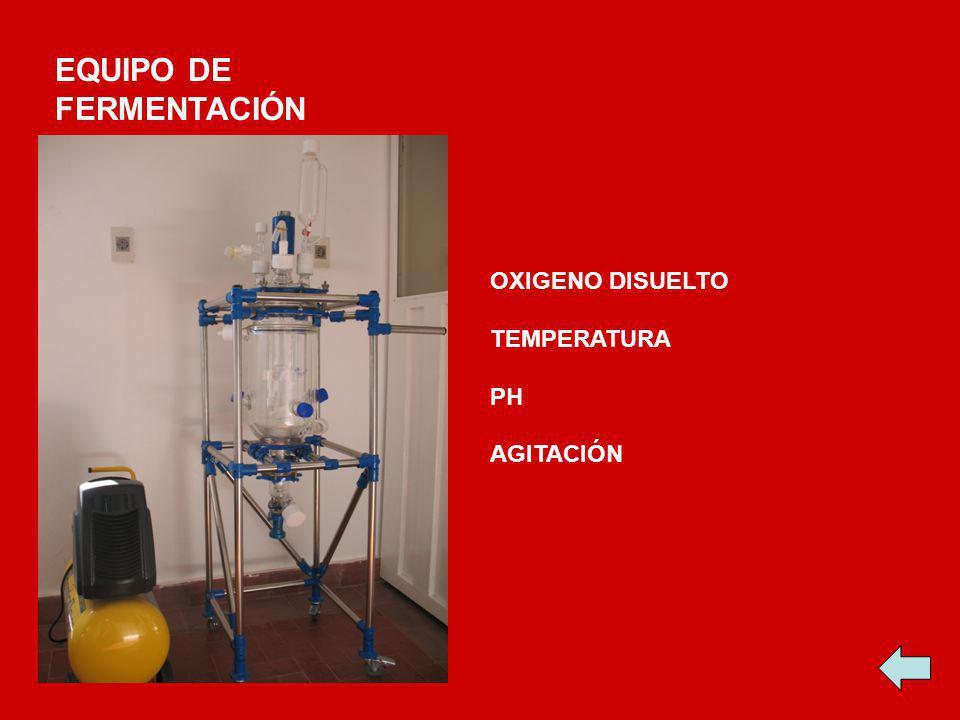 EQUIPO DE FERMENTACIÓN OXIGENO DISUELTO TEMPERATURA PH AGITACIÓN