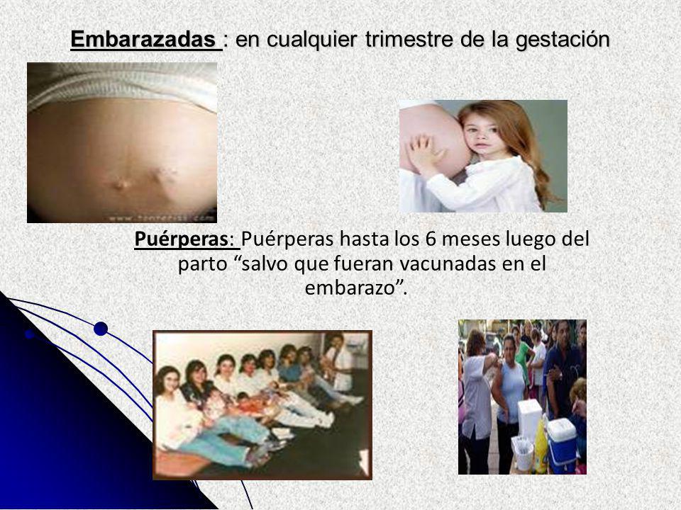 Embarazadas : en cualquier trimestre de la gestación Puérperas: Puérperas hasta los 6 meses luego del parto salvo que fueran vacunadas en el embarazo.