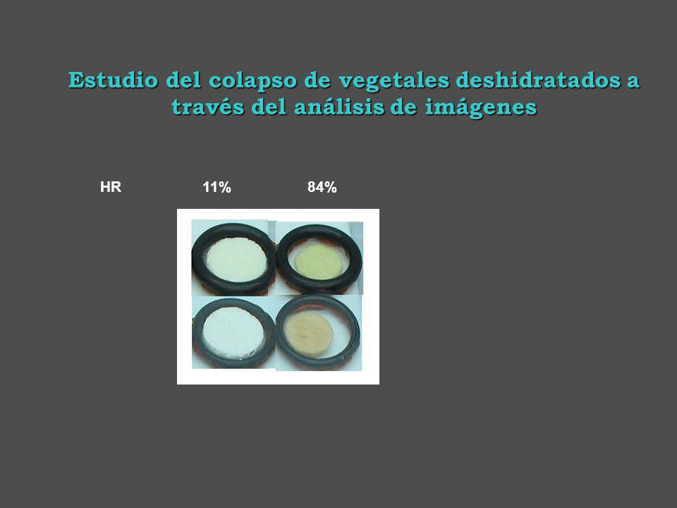 HR 11% 84% Estudio del colapso de vegetales deshidratados a través del análisis de imágenes