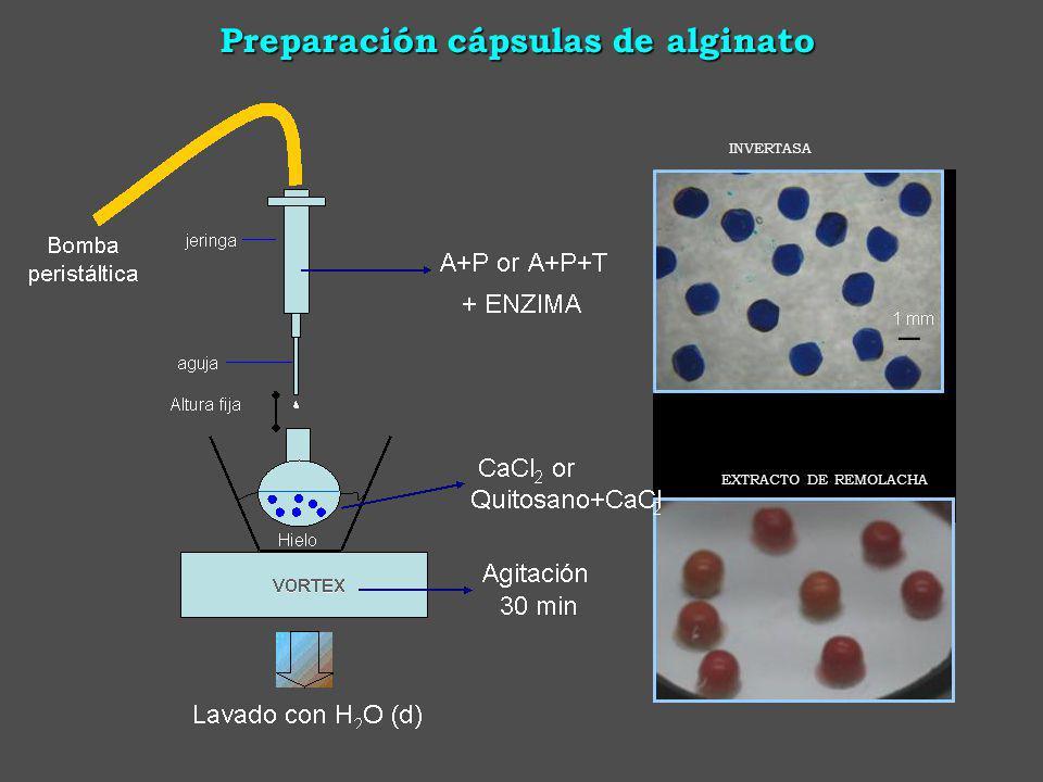 Preparación cápsulas de alginato INVERTASA EXTRACTO DE REMOLACHA