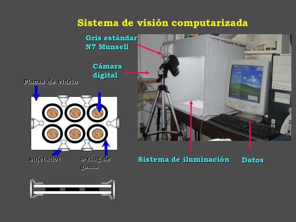 Gris estándar N7 Munsell Sistema de iluminación Cámaradigital Datos Datos Sistema de visión computarizada o-ring de goma Placas de vidrio sujetador