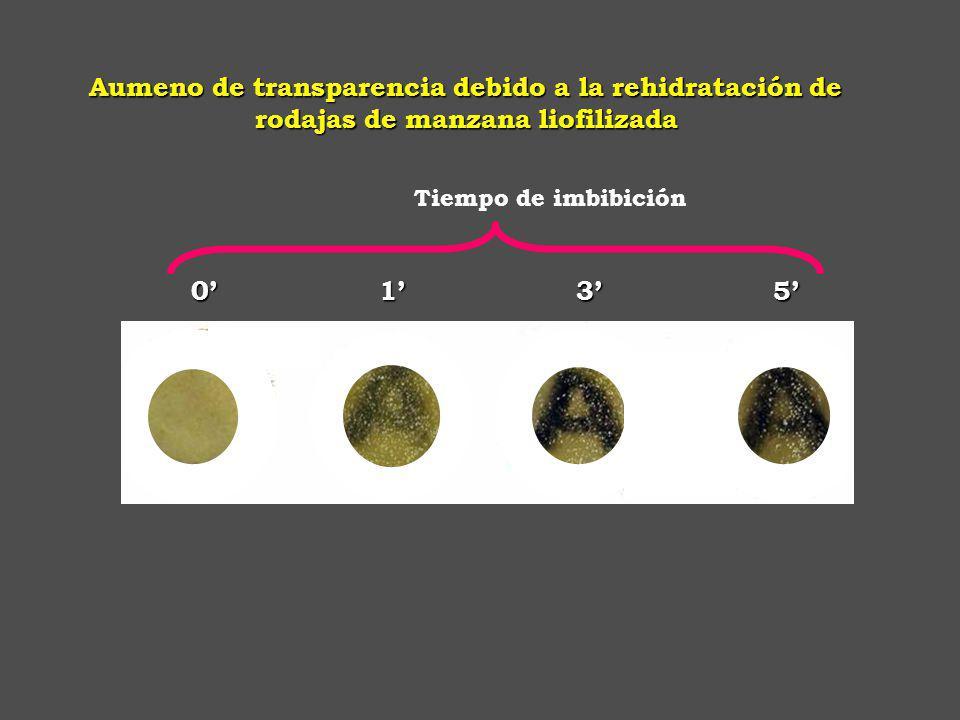 S-propil cisteín sulfóxido Cebolla Ajo Cebolla de verdeo Cebollín Puerro S-metil-cisteín- sulfóxido S -alil-cisteín-sulfóxido Algunos de los componentes azufrados de las plantas de la familia Allinaceae Jones y col., 2004