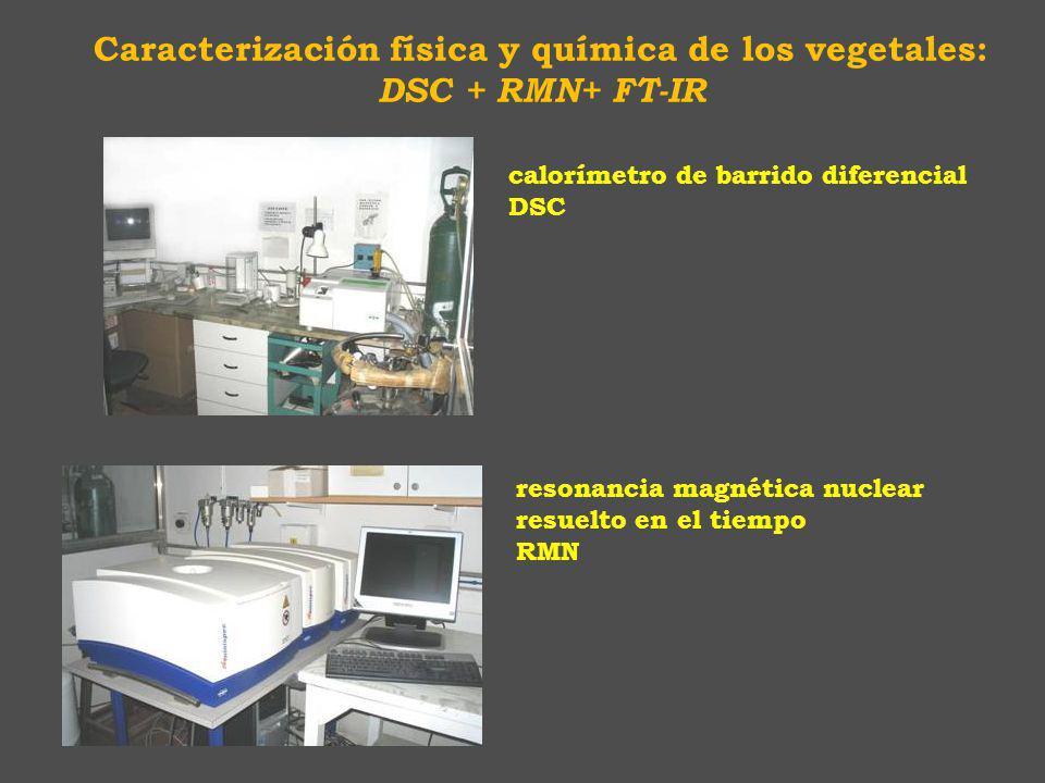 resonancia magnética nuclear resuelto en el tiempo RMN calorímetro de barrido diferencial DSC Caracterización física y química de los vegetales: DSC + RMN+ FT-IR