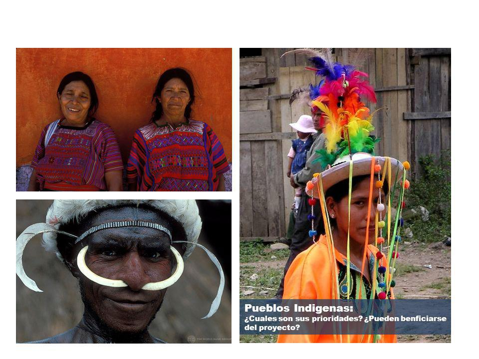 9 Pueblos Indigenas: ¿Cuales son sus prioridades. ¿Pueden benficiarse del proyecto.