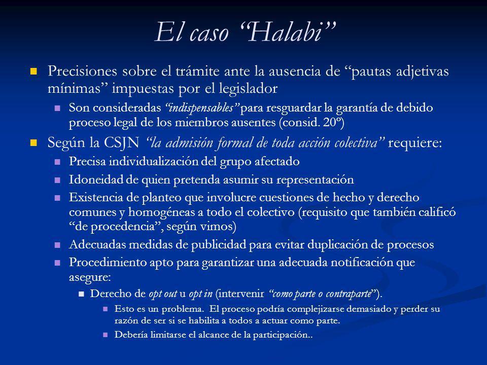 El caso Halabi Precisiones sobre el trámite ante la ausencia de pautas adjetivas mínimas impuestas por el legislador Son consideradas indispensables p