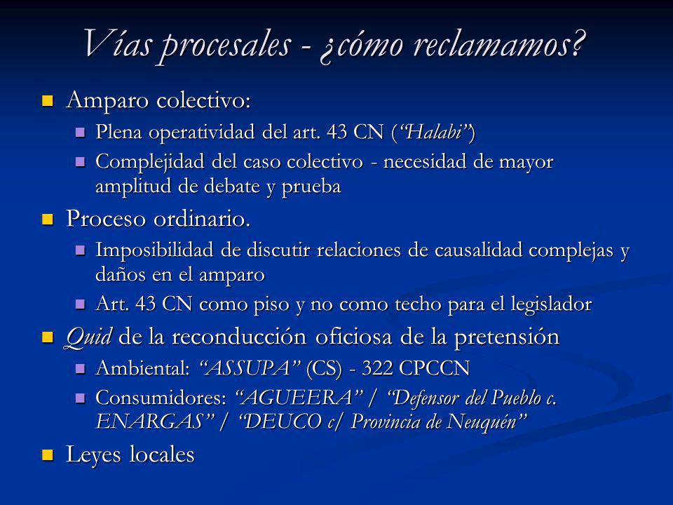Vías procesales - ¿cómo reclamamos? Amparo colectivo: Amparo colectivo: Plena operatividad del art. 43 CN (Halabi) Plena operatividad del art. 43 CN (