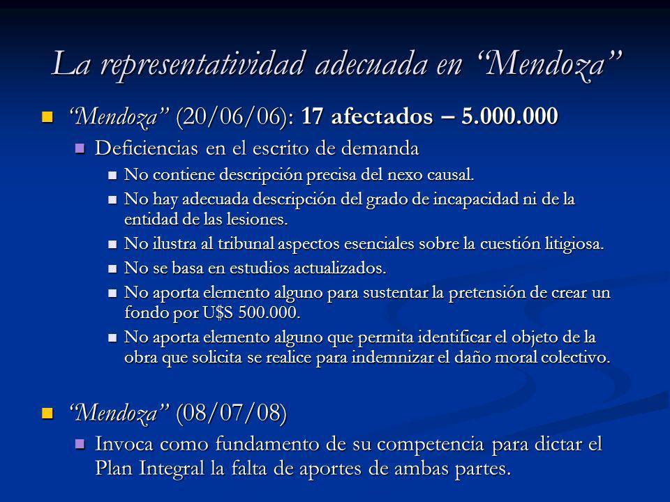 La representatividad adecuada en Mendoza Mendoza (20/06/06): 17 afectados – 5.000.000 Mendoza (20/06/06): 17 afectados – 5.000.000 Deficiencias en el