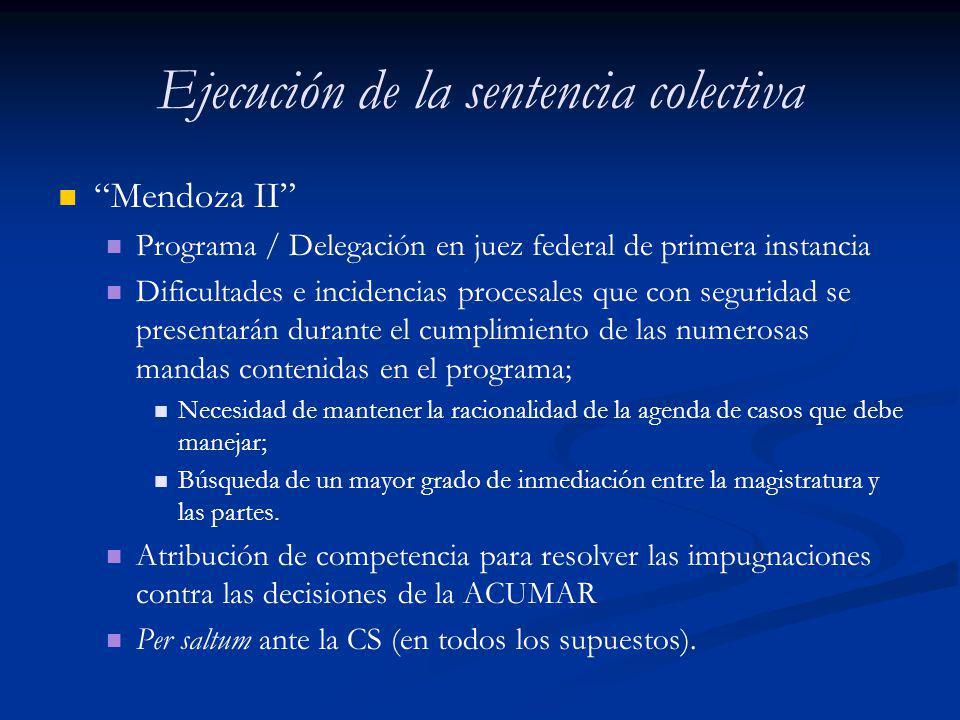 Ejecución de la sentencia colectiva Mendoza II Programa / Delegación en juez federal de primera instancia Dificultades e incidencias procesales que co
