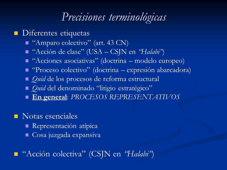 Precisiones terminológicas Diferentes etiquetas Amparo colectivo (art. 43 CN) Acción de clase (USA – CSJN en Halabi) Acciones asociativas (doctrina –
