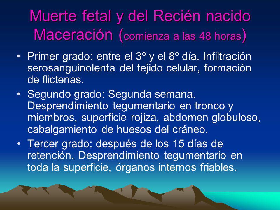 Muerte fetal y del Recién nacido Maceración ( comienza a las 48 horas ) Primer grado: entre el 3º y el 8º día. Infiltración serosanguinolenta del teji