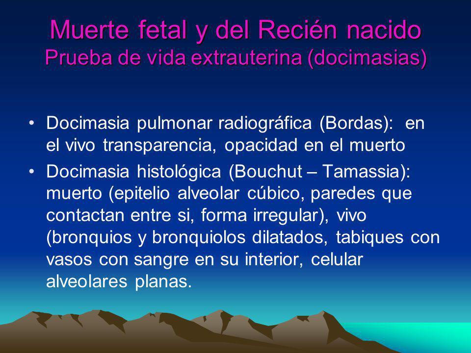 Muerte fetal y del Recién nacido Prueba de vida extrauterina (Docimasia de Galeno) Primer tiempo: se sumerge el block cardiopulmonar.