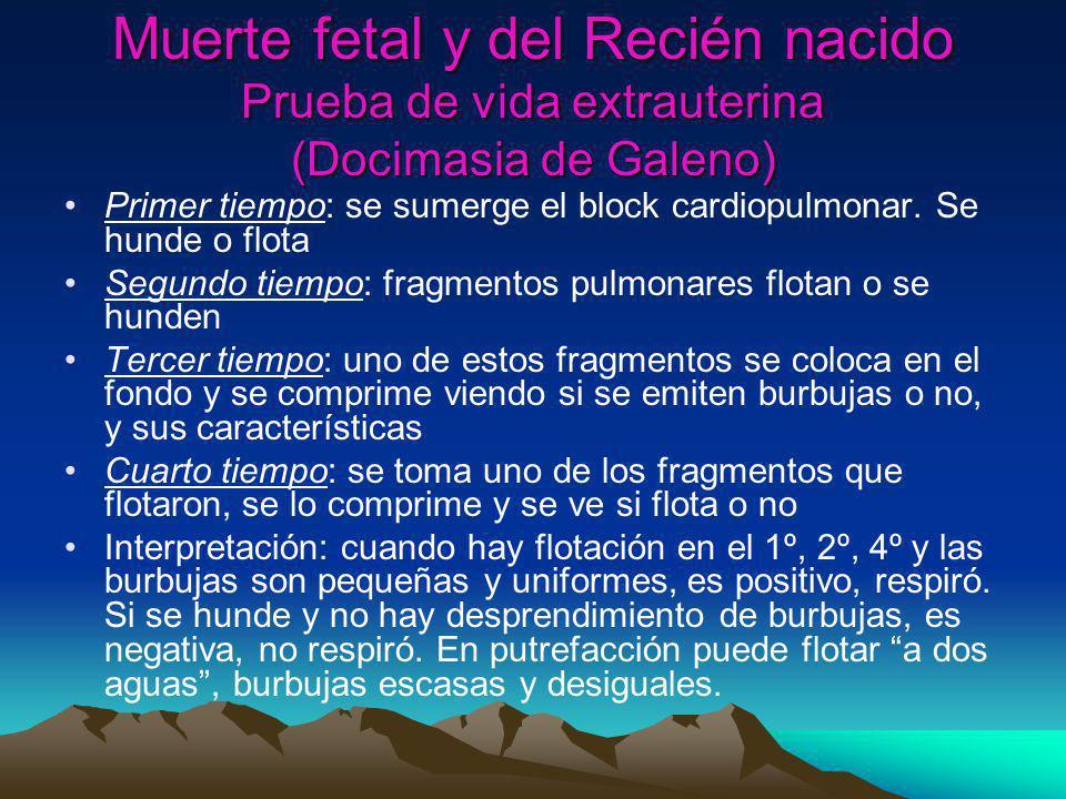 Muerte fetal y del Recién nacido Prueba de vida extrauterina (Docimasia de Galeno) Primer tiempo: se sumerge el block cardiopulmonar. Se hunde o flota