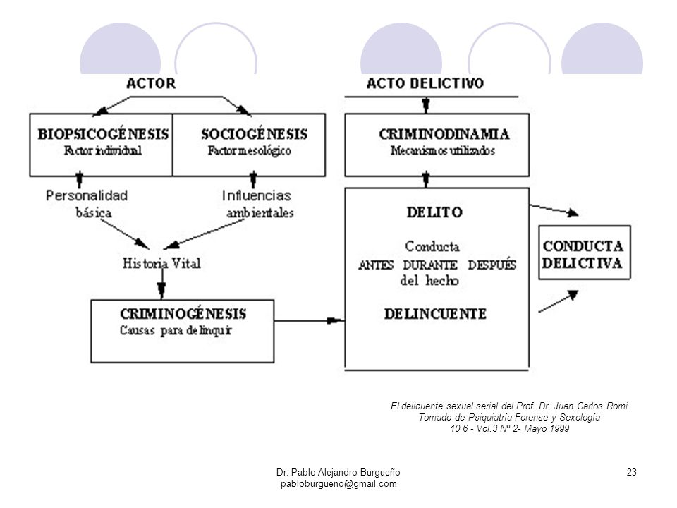 Dr. Pablo Alejandro Burgueño pabloburgueno@gmail.com 23 El delicuente sexual serial del Prof. Dr. Juan Carlos Romi Tomado de Psiquiatría Forense y Sex