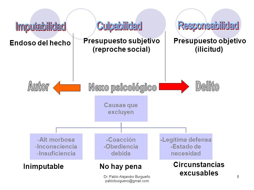 Dr. Pablo Alejandro Burgueño pabloburgueno@gmail.com 8 Endoso del hecho Presupuesto subjetivo (reproche social) Presupuesto objetivo (ilicitud) Inimpu