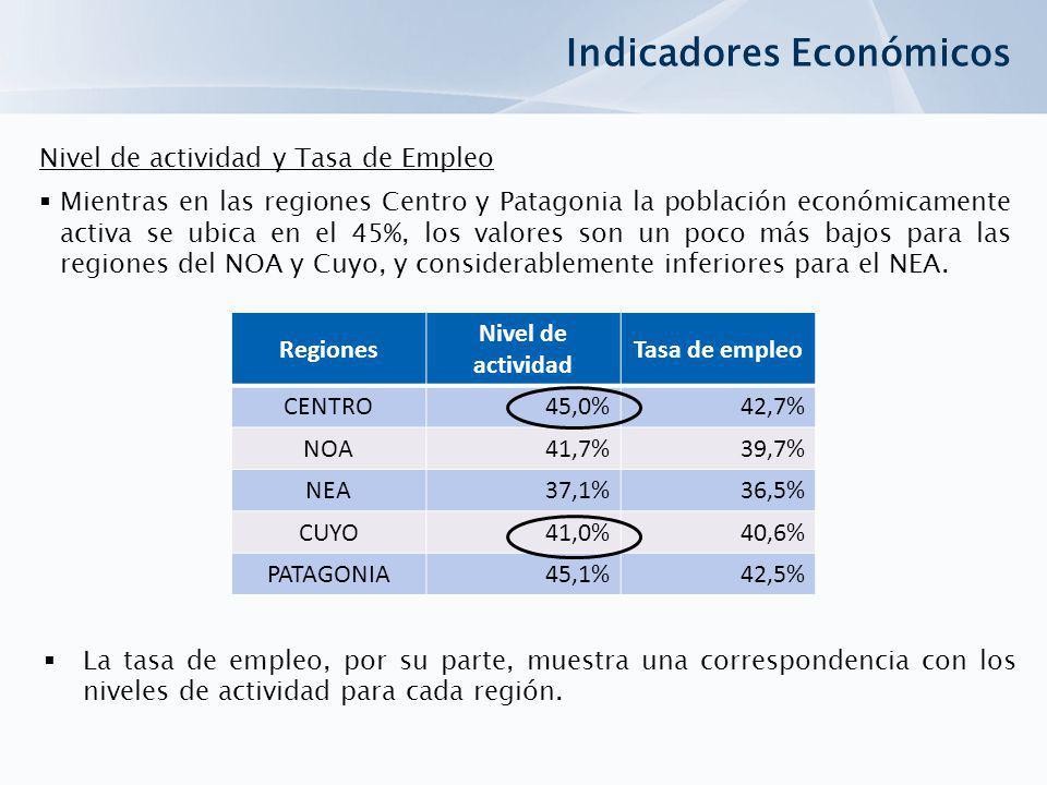Regiones Nivel de actividad Tasa de empleo CENTRO45,0%42,7% NOA41,7%39,7% NEA37,1%36,5% CUYO41,0%40,6% PATAGONIA45,1%42,5% Indicadores Económicos Nive