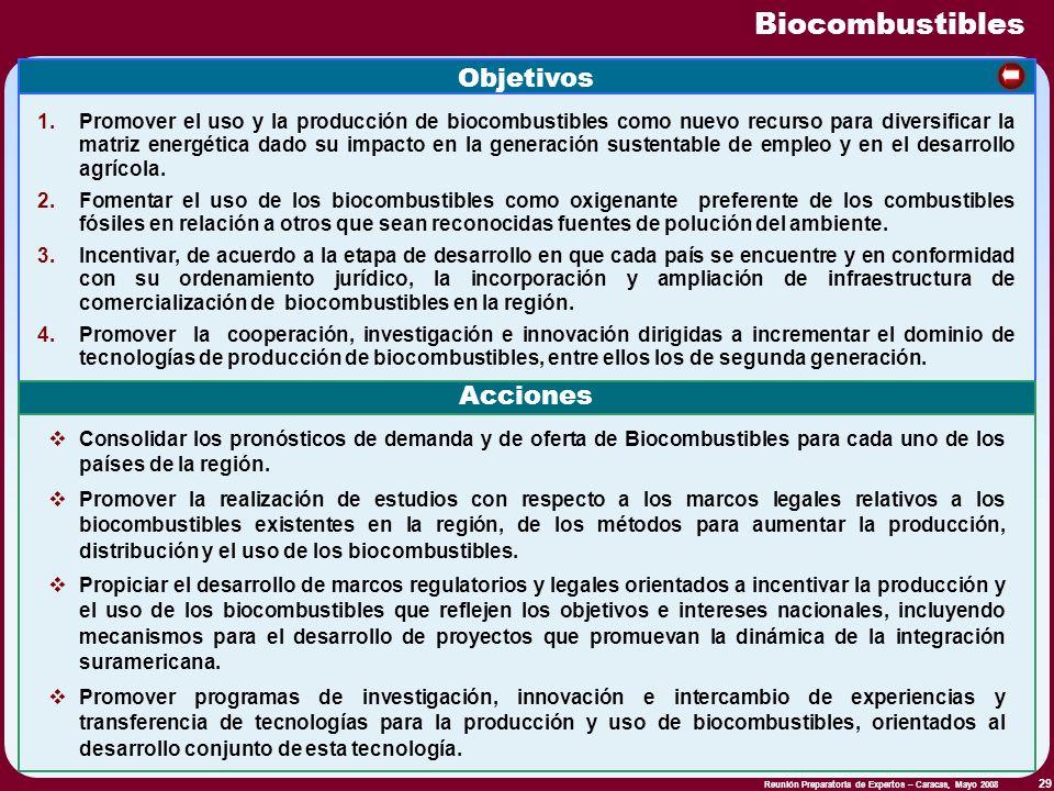 Reunión Preparatoria de Expertos – Caracas, Mayo 2008 29 Biocombustibles Objetivos 1.Promover el uso y la producción de biocombustibles como nuevo rec