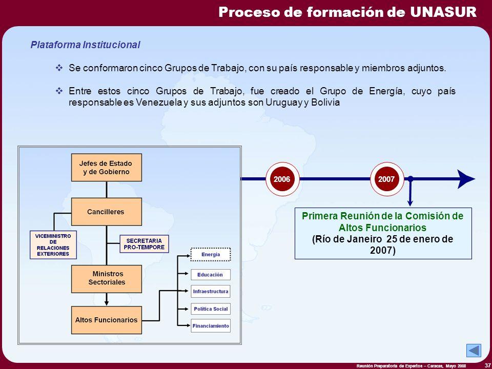 Reunión Preparatoria de Expertos – Caracas, Mayo 2008 37 Plataforma Institucional Se conformaron cinco Grupos de Trabajo, con su país responsable y mi