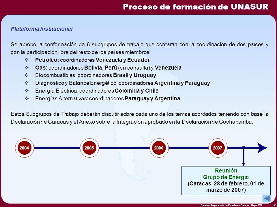 Reunión Preparatoria de Expertos – Caracas, Mayo 2008 38 Plataforma Institucional Se aprobó la conformación de 6 subgrupos de trabajo que contarán con