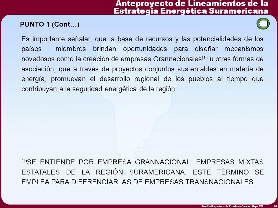 Reunión Preparatoria de Expertos – Caracas, Mayo 2008 44 Es importante señalar, que la base de recursos y las potencialidades de los países miembros b