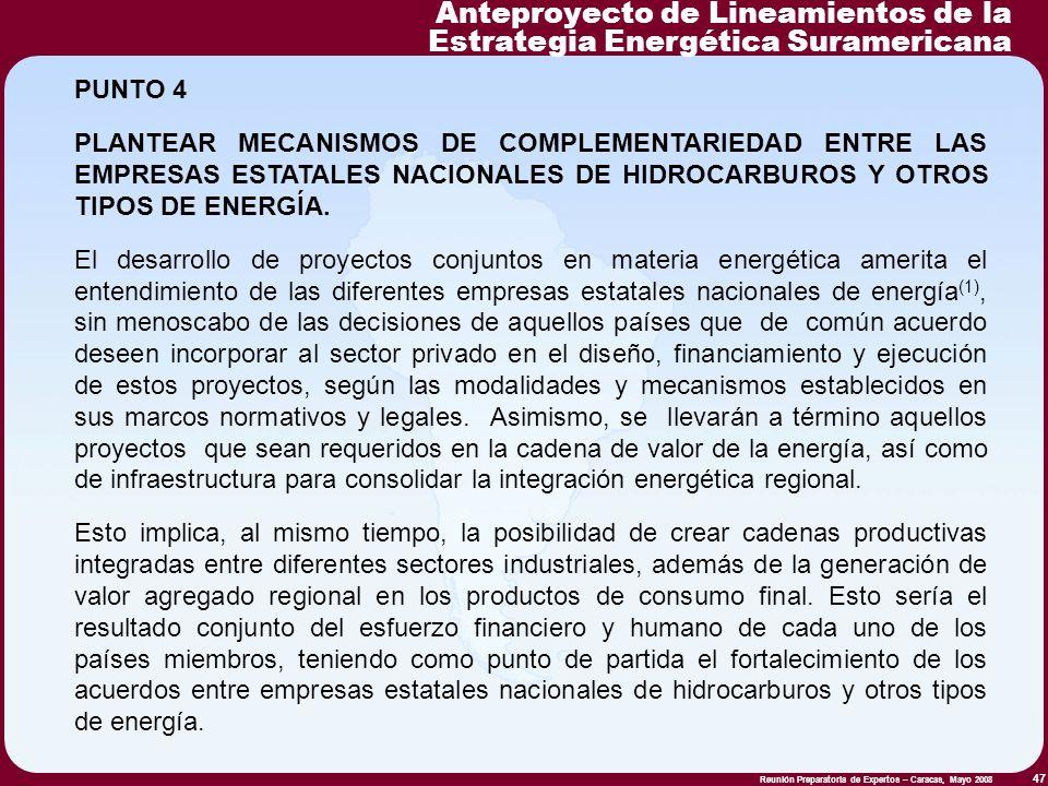 Reunión Preparatoria de Expertos – Caracas, Mayo 2008 47 PUNTO 4 PLANTEAR MECANISMOS DE COMPLEMENTARIEDAD ENTRE LAS EMPRESAS ESTATALES NACIONALES DE H