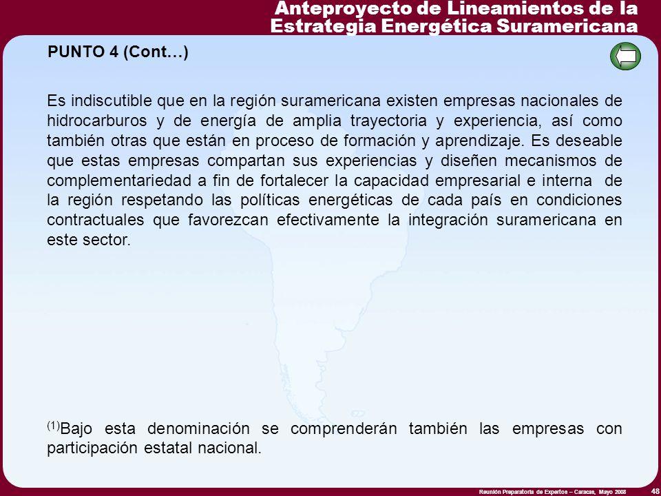 Reunión Preparatoria de Expertos – Caracas, Mayo 2008 48 Es indiscutible que en la región suramericana existen empresas nacionales de hidrocarburos y