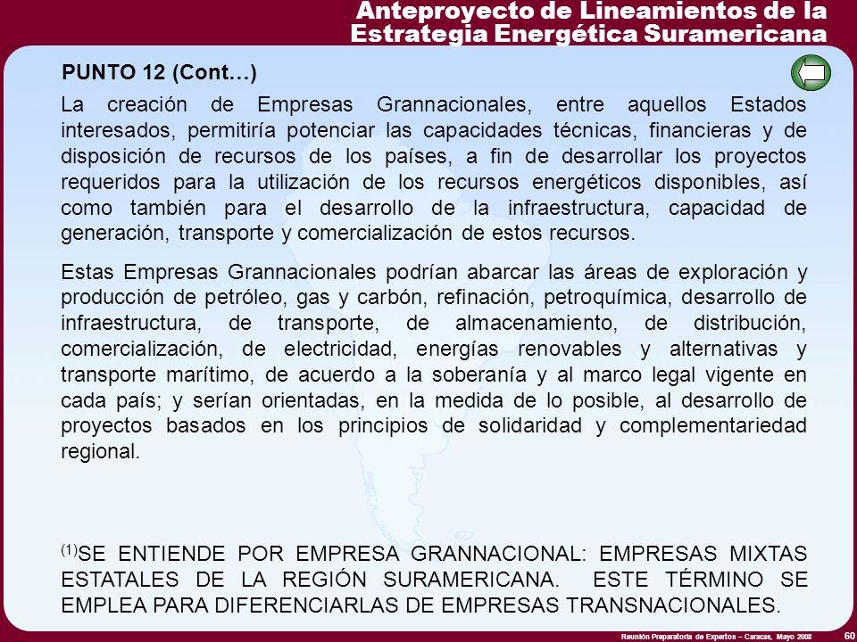 Reunión Preparatoria de Expertos – Caracas, Mayo 2008 60 La creación de Empresas Grannacionales, entre aquellos Estados interesados, permitiría potenc