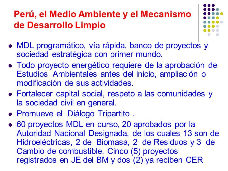 Perú, el Medio Ambiente y el Mecanismo de Desarrollo Limpio MDL programático, vía rápida, banco de proyectos y sociedad estratégica con primer mundo.