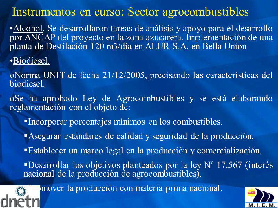 Instrumentos en curso: Sector agrocombustibles Alcohol. Se desarrollaron tareas de análisis y apoyo para el desarrollo por ANCAP del proyecto en la zo