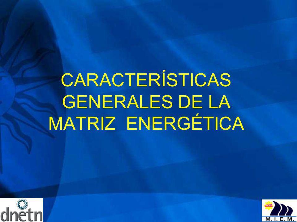 La Visión planteada para el sector energético uruguayo se sustenta en siete ejes estratégicos: Energía como insumo fundamental para el desarrollo productivo y social; Evolución sostenible del sector energético, considerando su dimensión técnica, económica y ambiental; Diversificación de las fuentes de abastecimiento y uso racional; Profundización de la integración regional; Incrementar el grado de autonomía de suministro: recursos autóctonos; Potenciar la participación del empleo y la industria local; Articulación de una mayor coordinación institucional del sector.