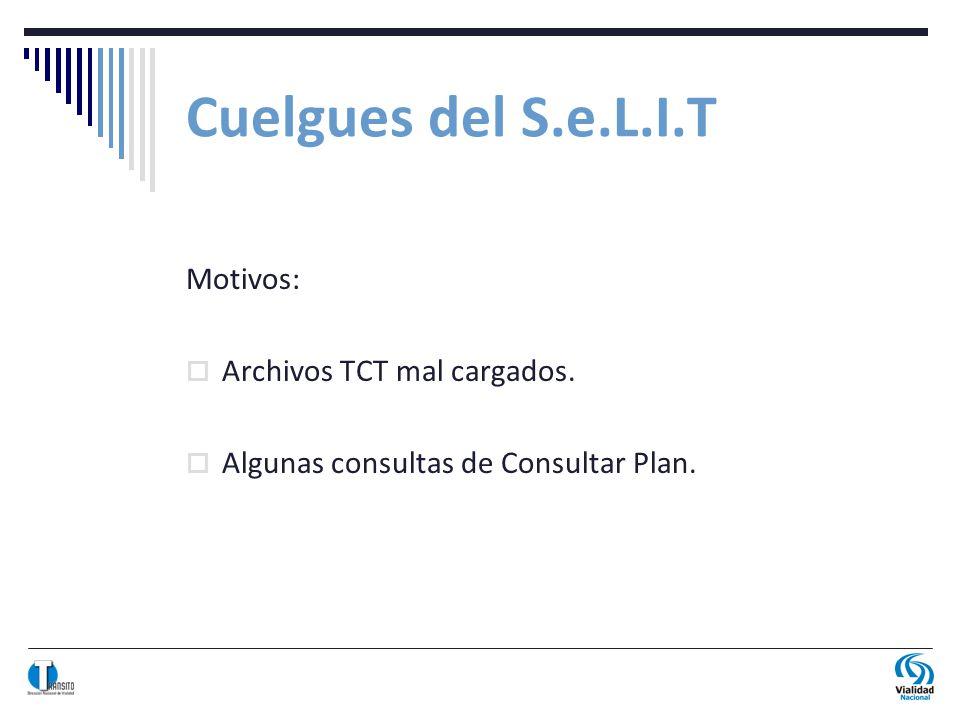 Cuelgues del S.e.L.I.T Motivos: Archivos TCT mal cargados. Algunas consultas de Consultar Plan.