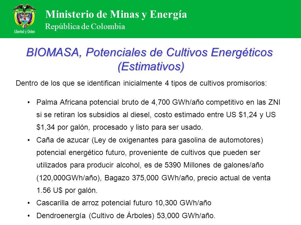 Ministerio de Minas y Energía República de Colombia BIOMASA, Potenciales de Cultivos Energéticos (Estimativos) Dentro de los que se identifican inicia