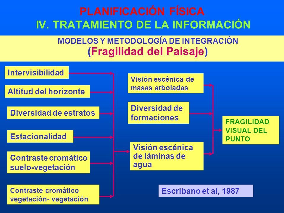 PLANIFICACIÓN FÍSICA IV. TRATAMIENTO DE LA INFORMACIÓN MODELOS Y METODOLOGÍA DE INTEGRACIÓN (Fragilidad del Paisaje) Intervisibilidad Altitud del hori