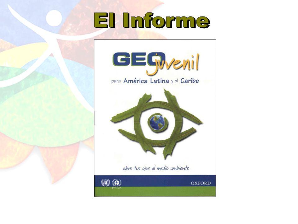 Iniciamos el GEO Juvenil como un proceso participativo de evaluación ambiental en donde los jóvenes participantes entre los 15 y 25 años tuvieron la oportunidad crear su propia edición de GEO con un enfoque específico en la región latinoamericana y caribeña.