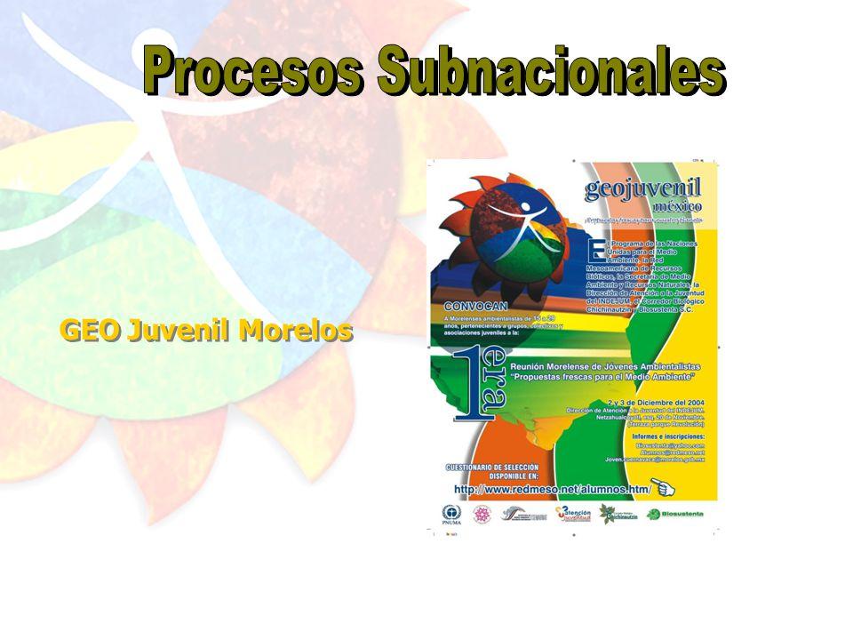 GEO Juvenil Centroamericano GEO Juvenil para el Caribe