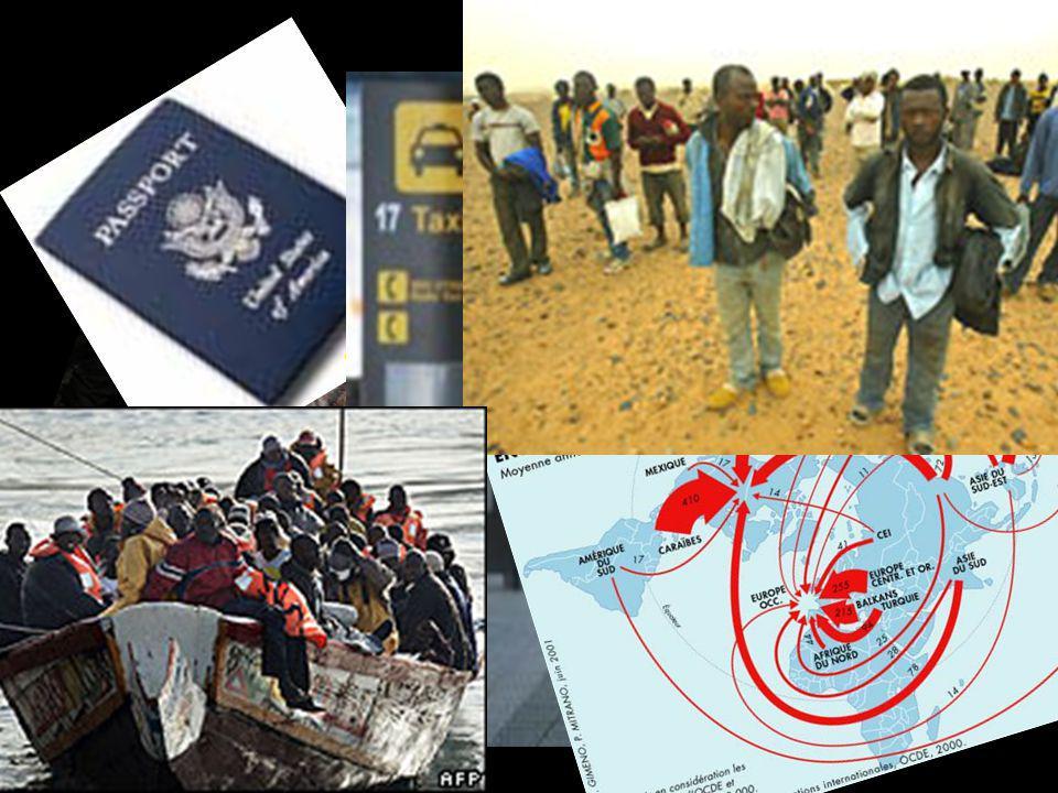 MASTER INTERNACIONAL EN MIGRACIONES La formación especializada que se plantea está destinada a distintos perfiles profesionales que necesitan una perspectiva amplia y global de los procesos migratorios en el mundo.