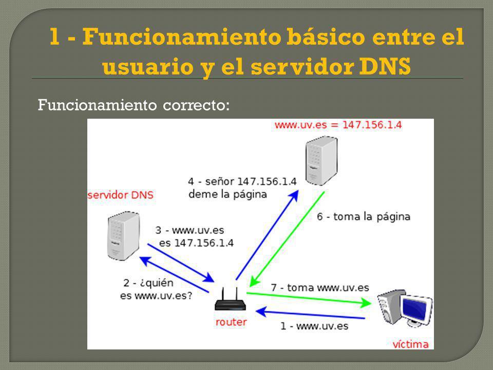 1 - Funcionamiento básico entre el usuario y el servidor DNS Funcionamiento correcto: