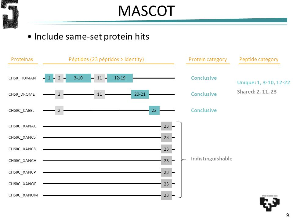 9 MASCOT Include same-set protein hits CH60_HUMAN CH60_DROME CH60C_XANAC 3-10 211 2 CH60C_CAEEL 20-21 22 ProteínasPéptidos (23 péptidos > identity)Pro