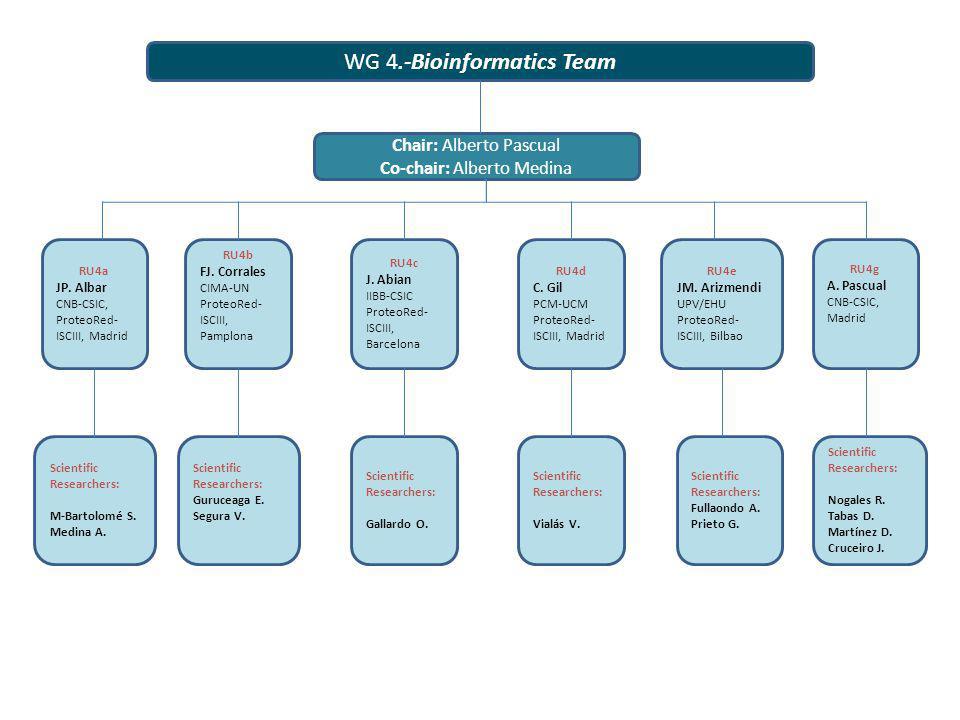 WG 4.-Bioinformatics Team RU4a JP. Albar CNB-CSIC, ProteoRed- ISCIII, Madrid Chair: Alberto Pascual Co-chair: Alberto Medina RU4b FJ. Corrales CIMA-UN