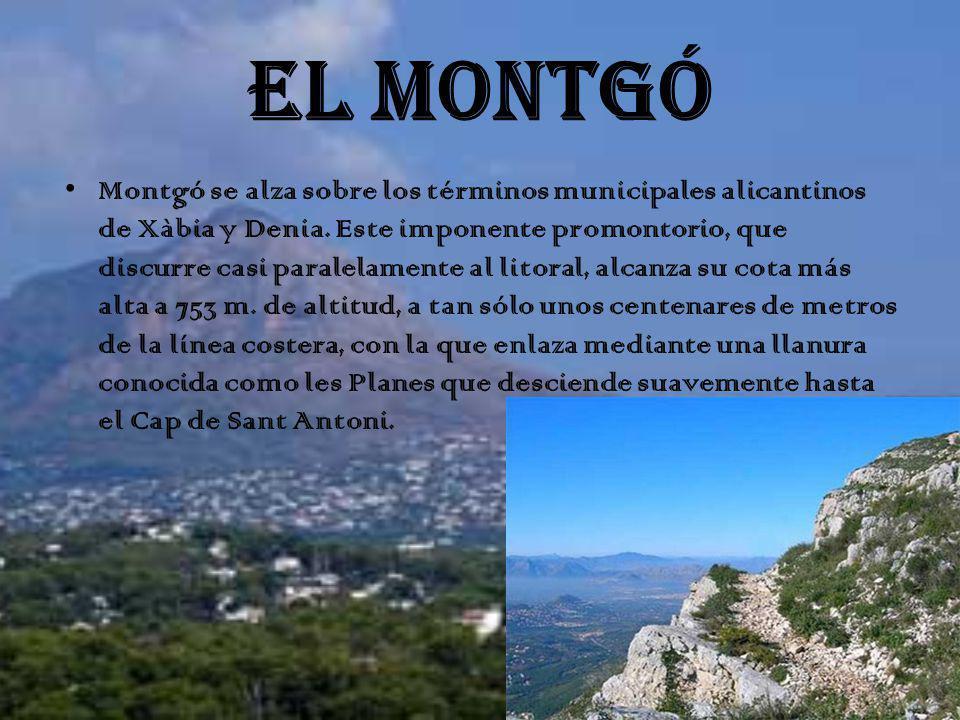 EL MONTGÓ Montgó se alza sobre los términos municipales alicantinos de Xàbia y Denia. Este imponente promontorio, que discurre casi paralelamente al l
