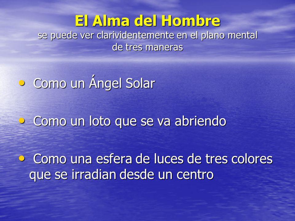 El Alma del Hombre se puede ver clarividentemente en el plano mental de tres maneras Como un Ángel Solar Como un Ángel Solar Como un loto que se va ab