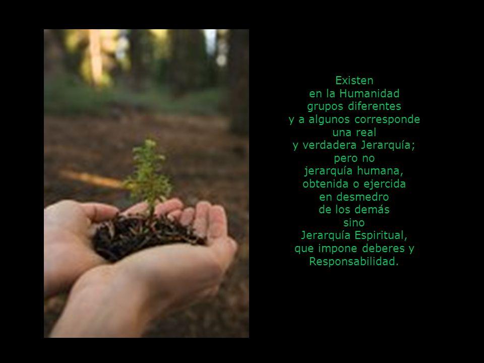 Existen en la Humanidad grupos diferentes y a algunos corresponde una real y verdadera Jerarquía; pero no jerarquía humana, obtenida o ejercida en desmedro de los demás sino Jerarquía Espiritual, que impone deberes y Responsabilidad.